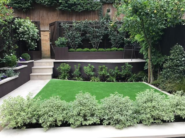 Wimbledon terraced garden