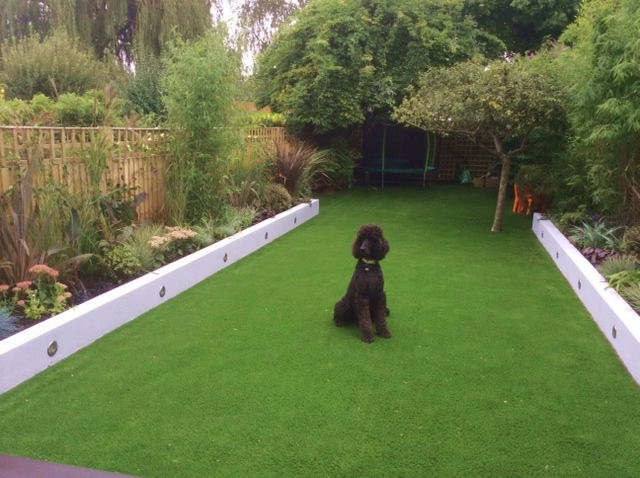 Artificial lawn with poodle